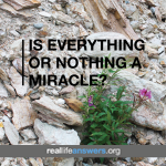everything-or-nothing-miracle